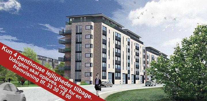 Langebohus | Lys & luft – Nye lejligheder til leje – Bryggen, byen og fælleden